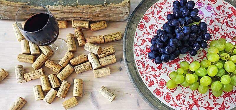 Die Vorzüge von Wein ist Freude auf einen Blick!