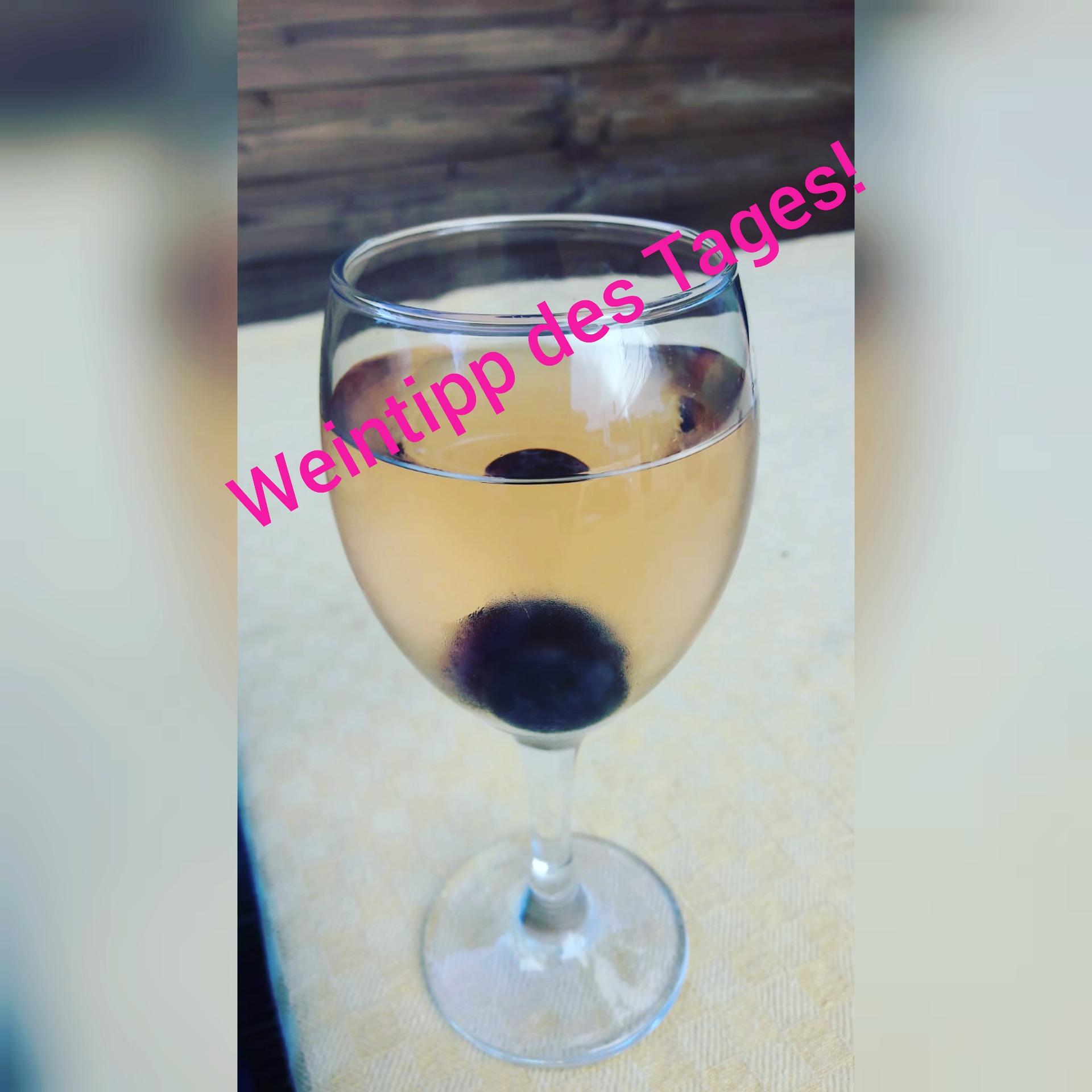 #4 Geschichten aus Bordeaux – Direkt an der (Wein-)Quelle: Sommer-Weintipp für kühlen Wein