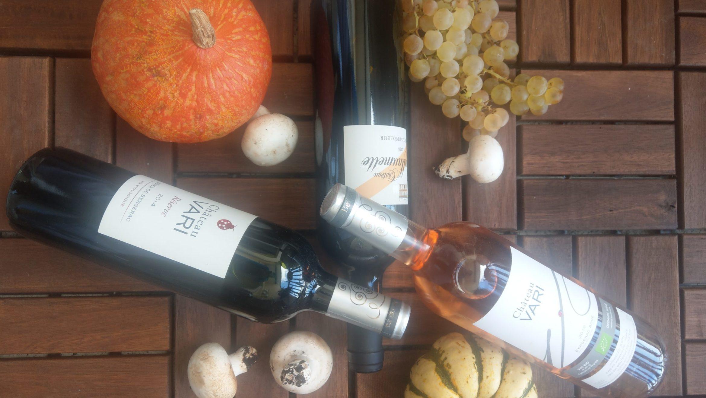 Herbst ist Kürbiszeit – Aber welcher Wein passt am besten zu herbstlichen Kürbisgerichten?